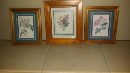 3 Beautiful Flower Picture Frames