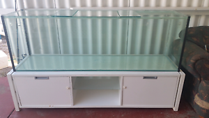 6ft Fish Tank, Stand and Filter Golden Beach Caloundra Area Preview