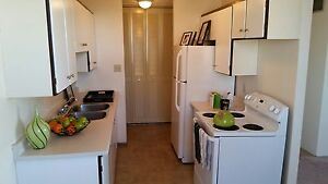 17th Floor Downtown Pet Friendly 2 Bedroom Available Immediately