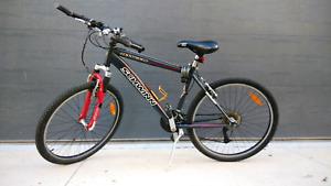Schwinn 21 gear Mountain Bike
