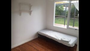 Nice Room in kingswood area Kingswood Penrith Area Preview