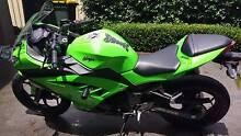 2013 Kawasaki Ninja 300 Green Faulconbridge Blue Mountains Preview