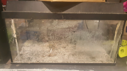 Small fish tank with filter and some extras