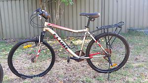 Mountain Bike Fluid Men's Glenbrook Blue Mountains Preview