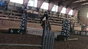 Riding time/ exercise rider
