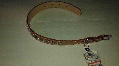 American Brand, DOUBLE row STUDS, Leather Dog Collar, Size 19