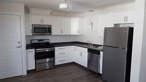Renovated Two Bedroom Apartment on Belvedere Avenue