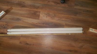 Tungsram Leuchtstoffröhren T12  warm weiß oder weiß 25w 98,5cm  für EX lampe?