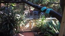 Room in garden flat $250 Curl Curl Manly Area Preview