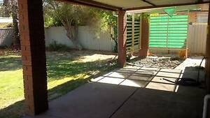 4 x 1 House for Rent. From $300 per week! 9min drive to airport. Forrestfield Kalamunda Area Preview