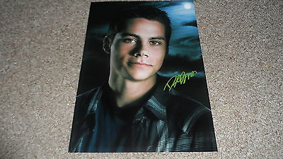 """TEEN WOLF TV SERIES PP SIGNED 12""""X8"""" A4 PHOTO POSTER DYLAN O'BRIEN"""
