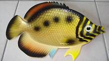 VINTAGE FISH DISH CIRCA 60's/70's Made by Hoover - Hong Kong Beaudesert Ipswich South Preview