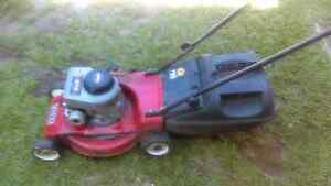 Lawn mower Sunnybank Brisbane South West Preview