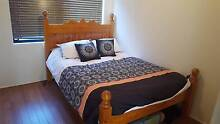 Pine Double Bed Redcliffe Belmont Area Preview