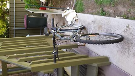 Silver Mountain Bike Highbury Tea Tree Gully Area Preview