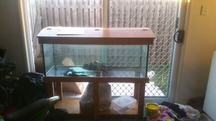Fish tank and fish Collingwood Park Ipswich City Preview