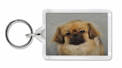 Tibetan Spaniel Dog Photo Keyring Animal Gift, AD-TS2K