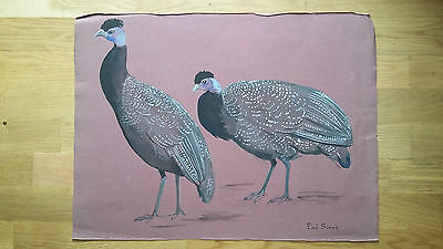 peinture gouache animalière signée Paul Simon dindons sculpteur animalier