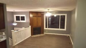 Newly Renovated Home For Rent In Falconridge