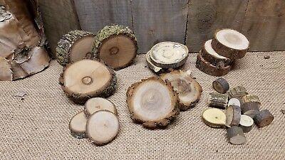 26 Mix Bag Wood Log Cut Branch Slices Rustic craft disc Diy Tree Round 1-2.5