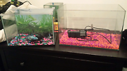 Different sized fish tanks Seville Grove Armadale Area Preview