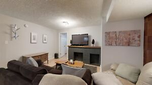 Large, fully renovated 1 bedroom basement of house in Holyrood