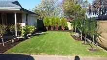 Landscaping Services, Gardening Maintenence St Peters Norwood Area Preview