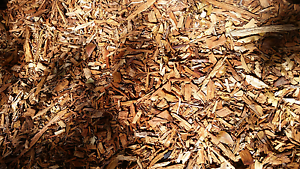 Mulch by the truckload Cleveland Redland Area Preview