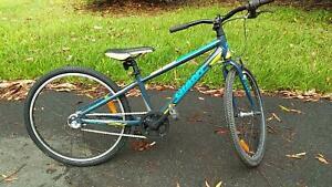 Kid's giant mountain bike