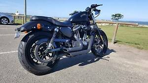 2013 Harley-Davidson Iron 883 with mods Miranda Sutherland Area Preview