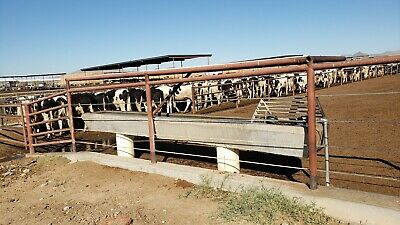 Stainless Steel Reinforced Concrete Water Trough. 16 X 2. Supports 8 O.c.