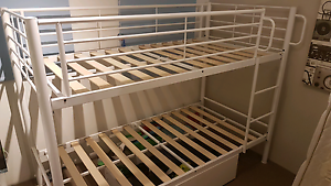 White bunk bed Pagewood Botany Bay Area Preview