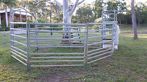Cattle/Horse/Livestock panels and yards Veteran Gympie Area Preview