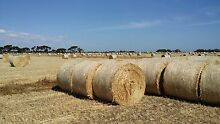 Triticale Hay Roll Strathalbyn Alexandrina Area Preview