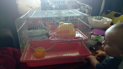 Mouse cage for sale