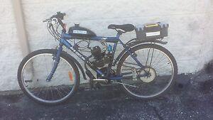 49cc 2-Stroke Moped