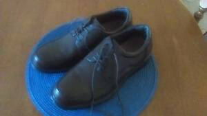 Mens Brown Shoes Geelong Geelong City Preview