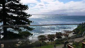 Beachfront room available Cronulla Sutherland Area Preview