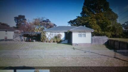 huose for sale only no land remove sydney nsw south granville Bonnyrigg Fairfield Area Preview