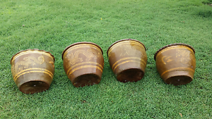Terracotta glazed pots with Chinese dragon pattern x 4 East Maitland Maitland Area Preview