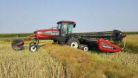 2008 M150 swather with 35ft header/ Bartel Farms Winnipeg Manitoba Preview