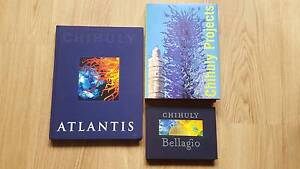 NNEW- VARIOUS DALE CHIHULY Art/Glass Blowing Books From $15 Mawson Lakes Salisbury Area Preview