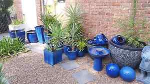 Lots of Blue Pots Cardiff Lake Macquarie Area Preview