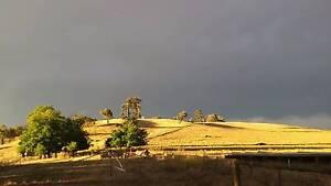 24 acre 4 bed Farm halfway between Syd & Melb. Humula Wagga Wagga City Preview