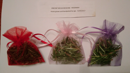 Healthy rosemary ancient welsh remedy