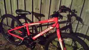 """Specialized hot rock 24"""" mtb North Lakes Pine Rivers Area Preview"""