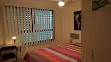 Furnished Room For Rent In Toowong Toowong Brisbane North West Preview