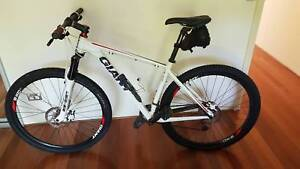 Giant XTC 2 29er mountain bike