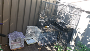 Birds cages lots of birds Wetherill Park Fairfield Area Preview