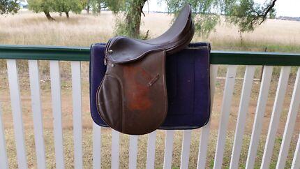 "17"" AP Saddle + Saddle Blanket Warwick Southern Downs Preview"